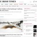 Irish Times-Review- Aidan Dunne